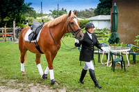 2015-8-30 Dressage at Lazy Meadows