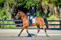 2016-4-10 Fox Lea Dressage Sunday