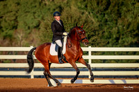 2017-1-14 Dressage Under the Oaks Sat AM