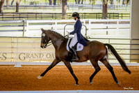 2017-1-14 Dressage Under the Oaks Sat Afternoon