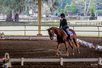 2017-1-21 Winter Kick Off Dressage Afternoon