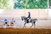 2017-8-20 Suncoast Dressage Show