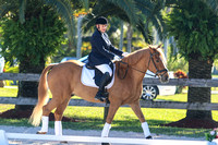 2015 Jan Lazy Meadow Dressage