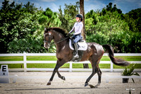 2016-9-10 Dagge Dressage at Heritage